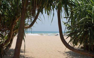 YOUvolution Camp Sri Lanka  29.7.-1.8. & 2.8. – 4.8.